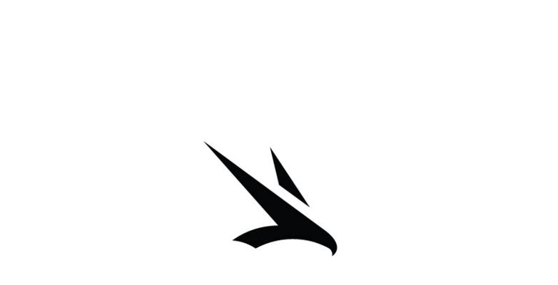 Minimal-Falcon-Logo-Design-Idea
